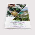 5 Girls Ltd - Holiday Look Book